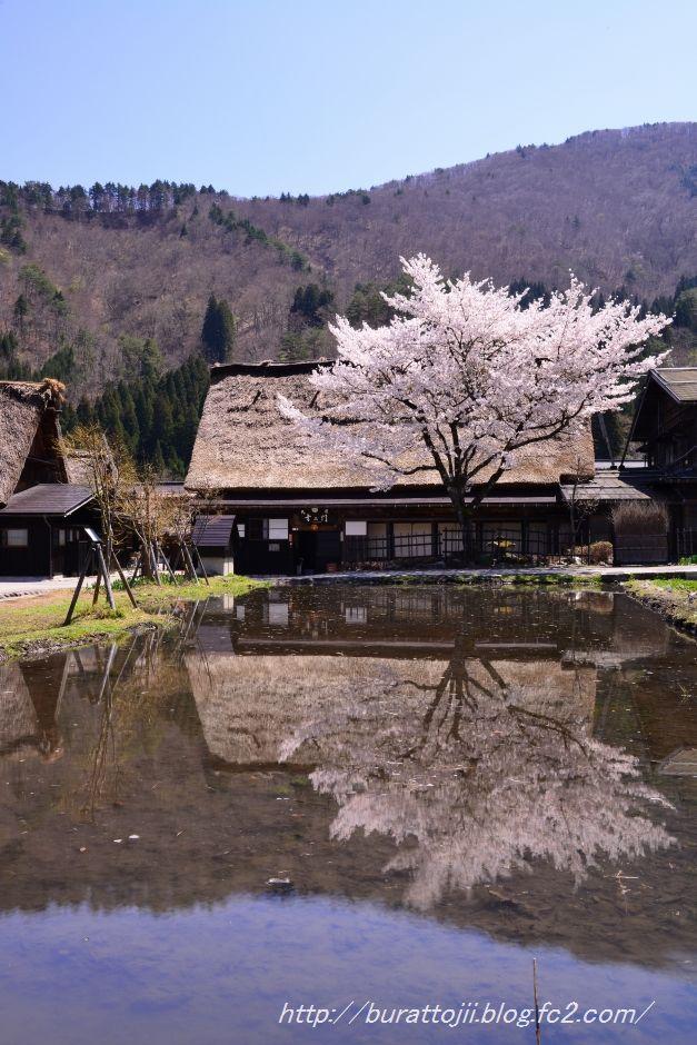 2014.04.23白川郷萩町中央付近8