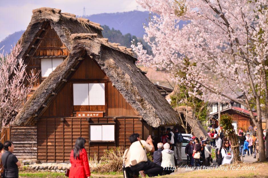 2014.04.23白川郷萩町中央付近2