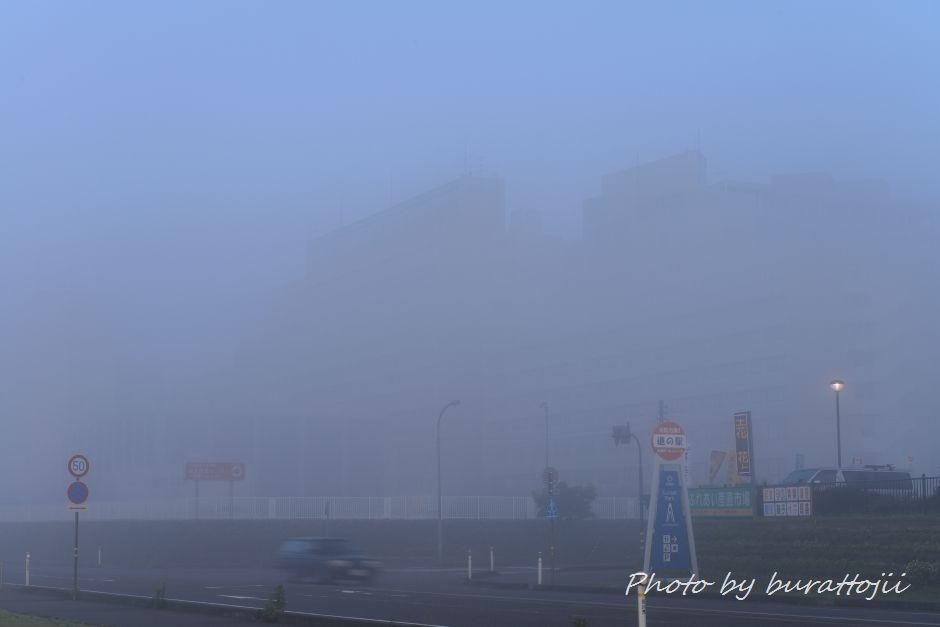 2014.05.27濃霧の夜明け5