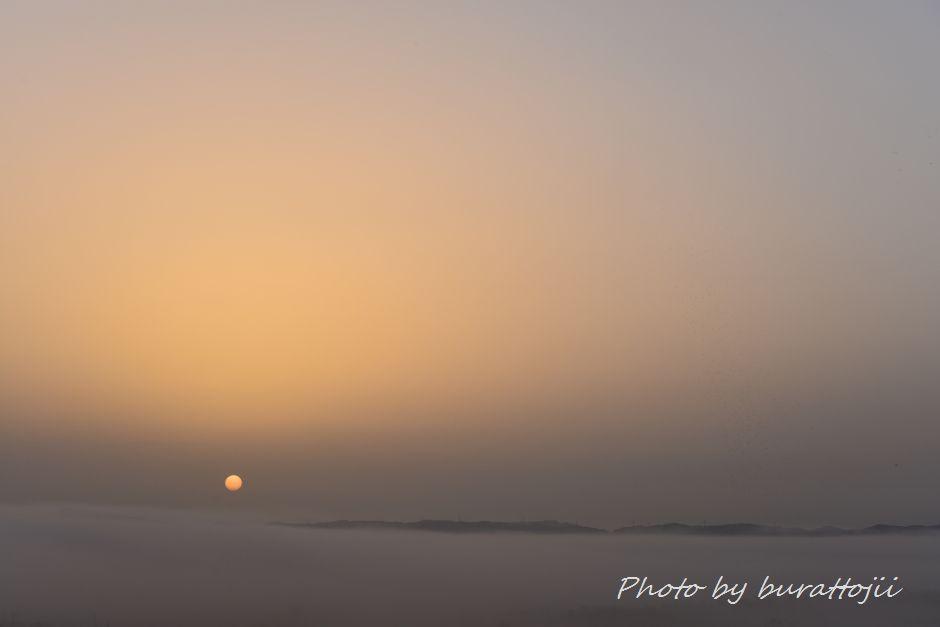 2014.05.27濃霧の夜明け1