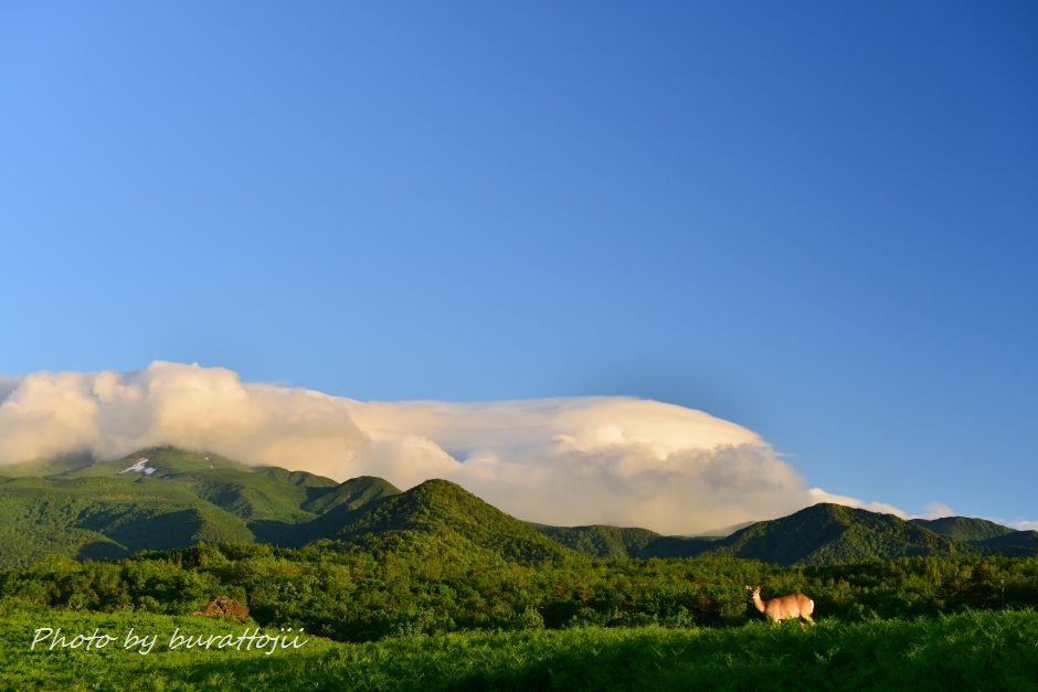 2014.06.13フレペの滝と羅臼岳5
