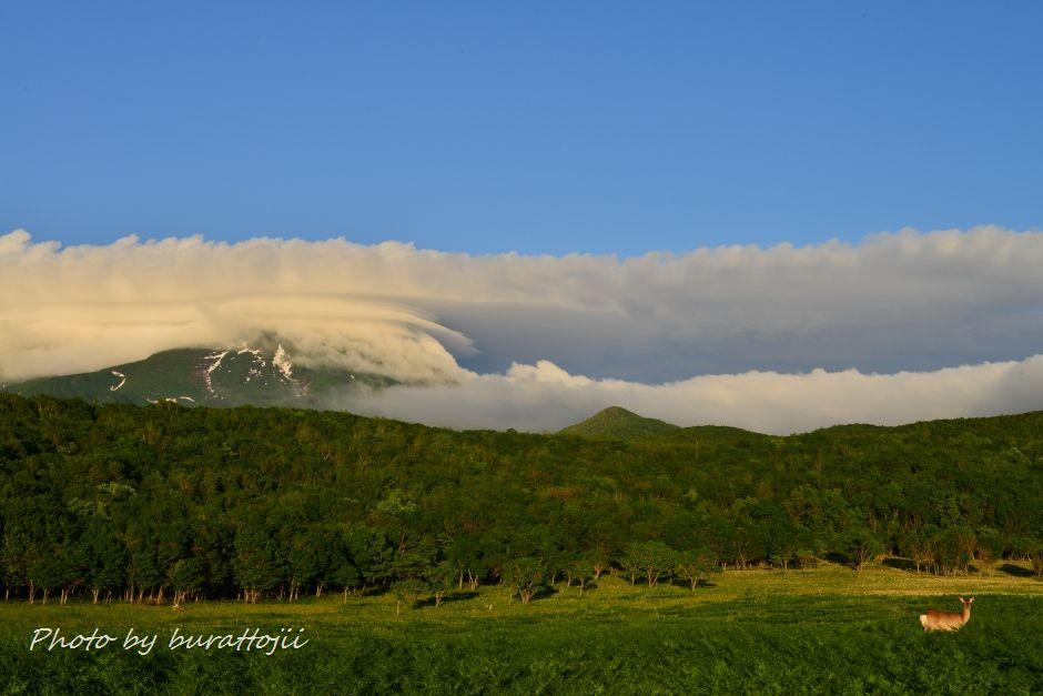 2014.06.13フレペの滝と羅臼岳4