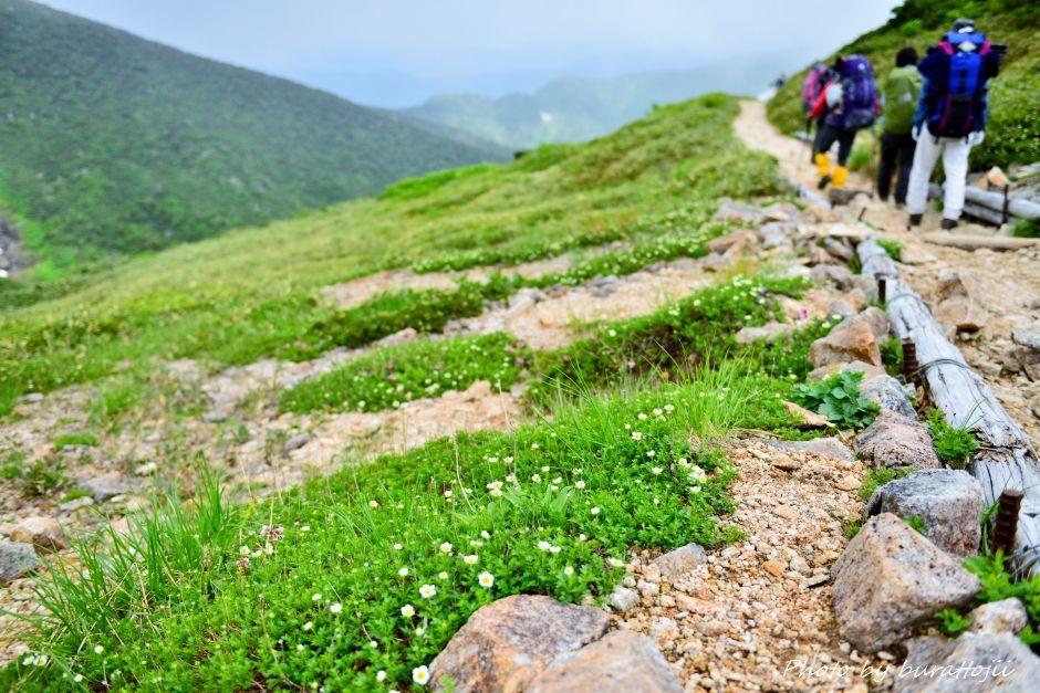 2014.07.21白山登山28