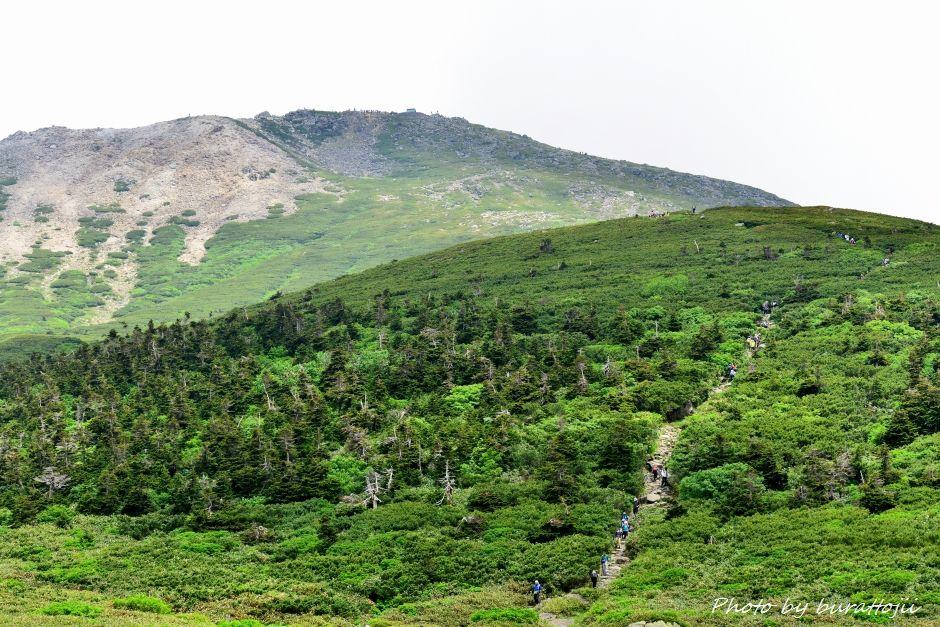 2014.07.21白山登山22