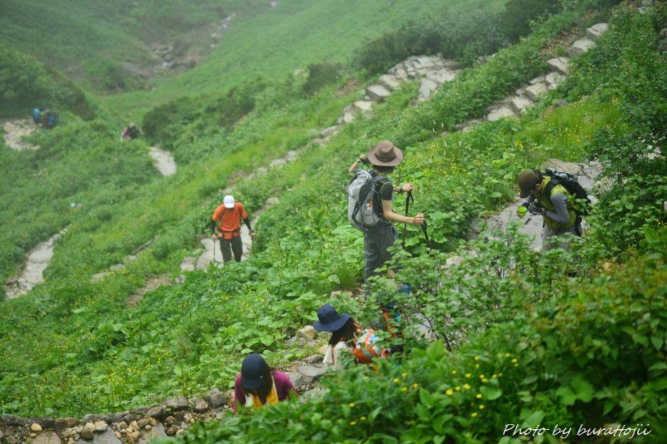 2014.07.21白山登山16
