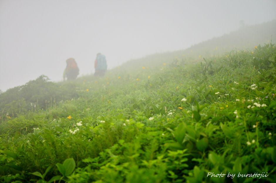 2014.07.22別山29関西からの仲良し登山者