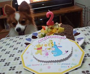 2歳の誕生日は?