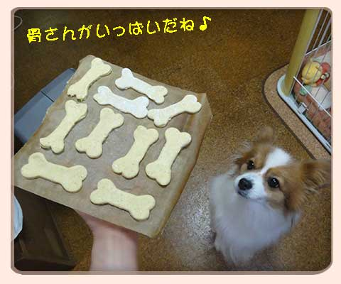 骨の焼き菓子