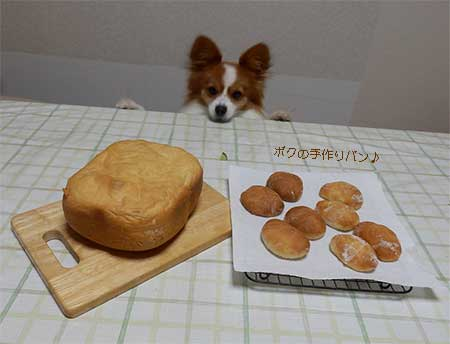 ボクの手作りパン
