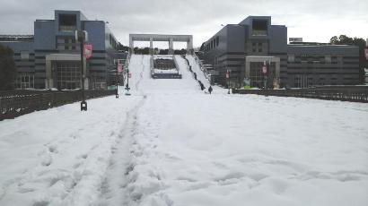 雪 パル多摩