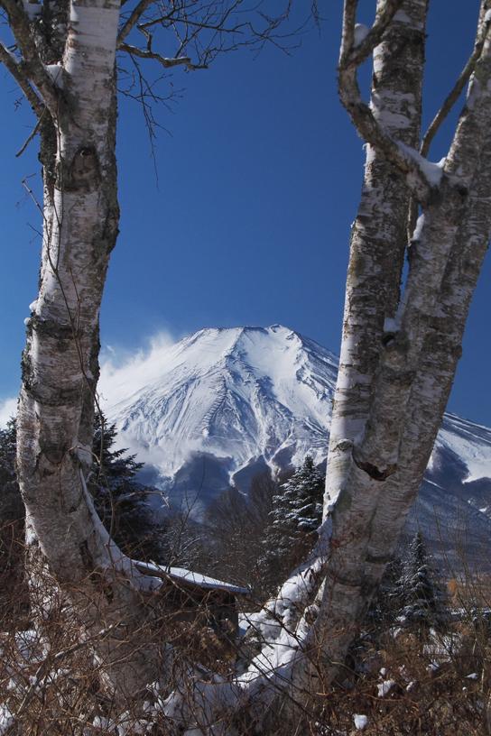山中湖の新雪-946-1