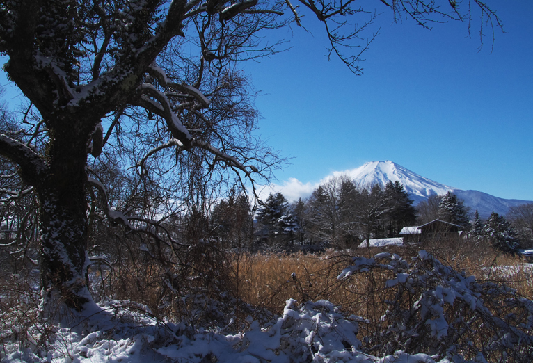 山中湖の新雪-947-1