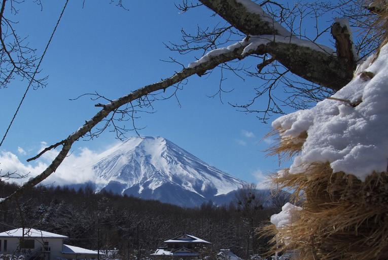 山中湖の新雪-969-5