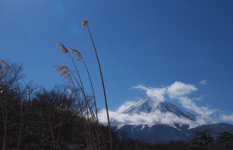 山中湖の新雪-993