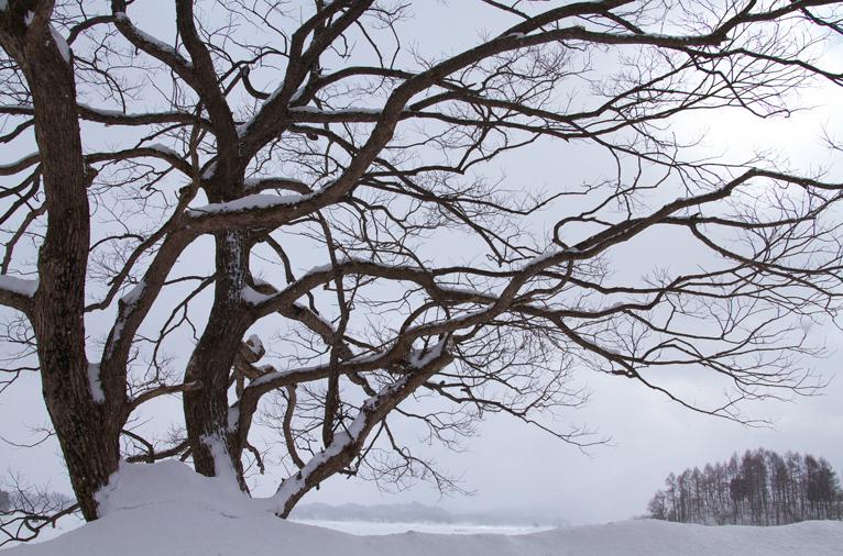 檜原湖-333-1