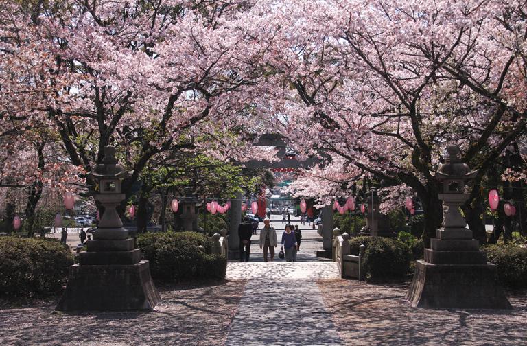 富士宮浅間神社-127