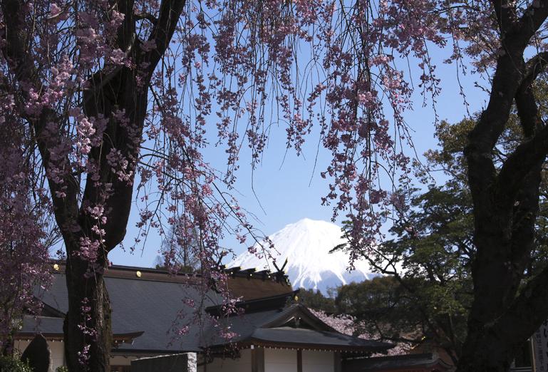富士宮浅間神社-023-4
