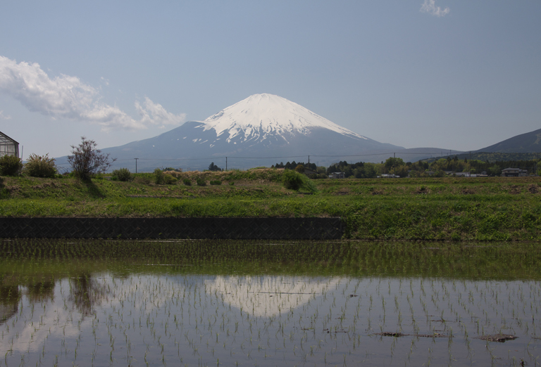 御殿場の富士山-616