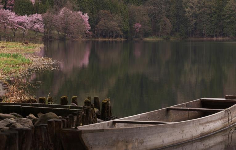 中綱湖-507-3