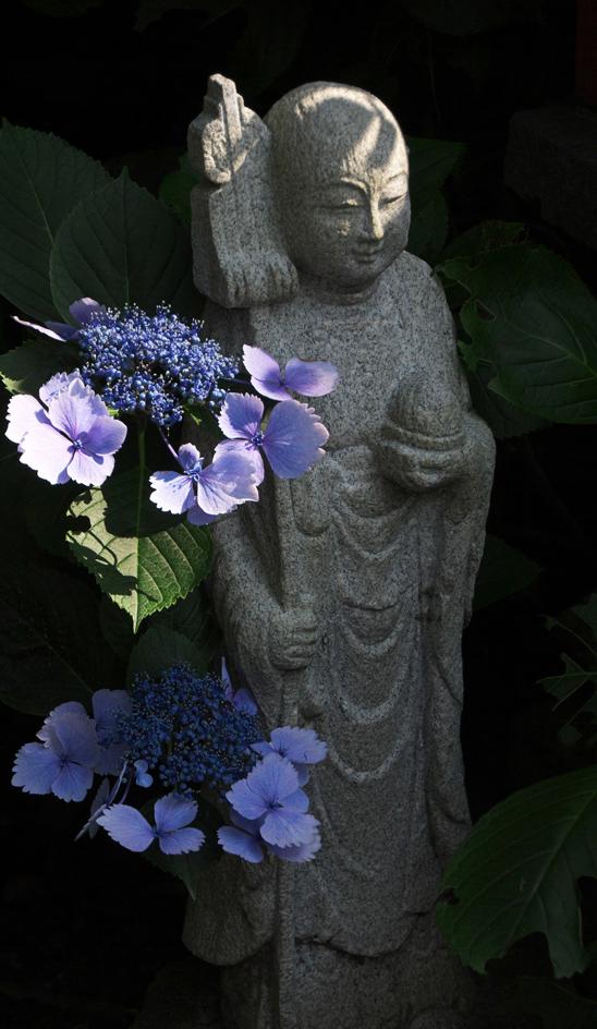 照江寺-661-3