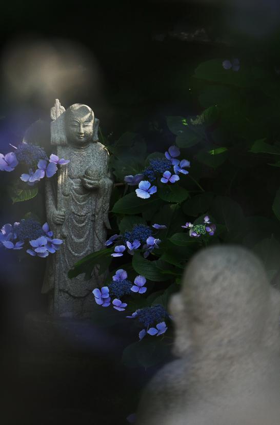 照江寺-672-3
