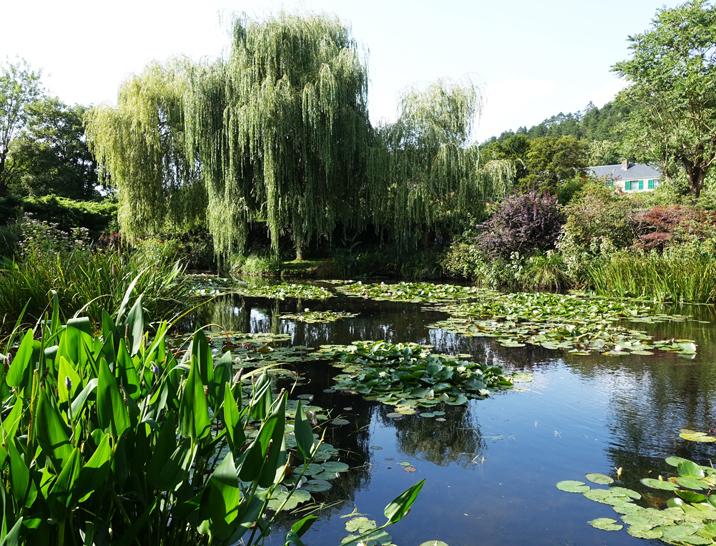 モネの庭-646-1