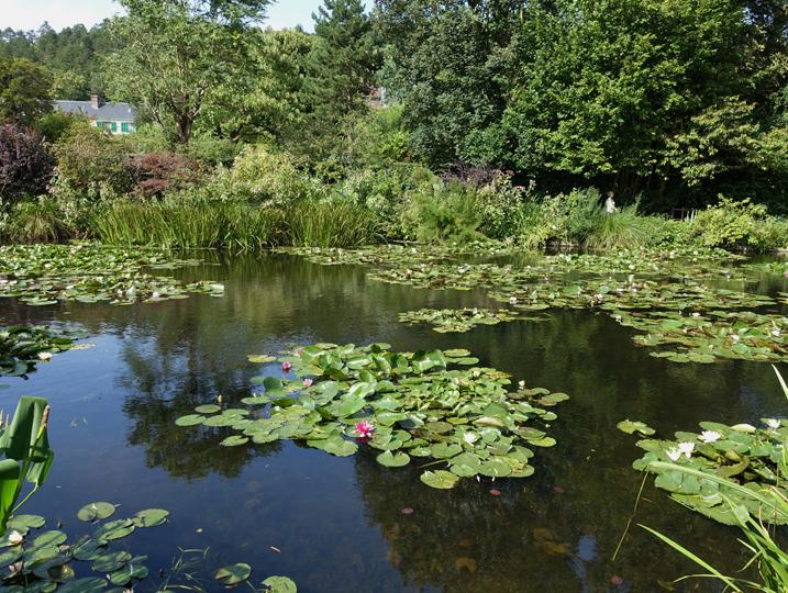 モネの庭-645-2