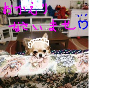 snap_chapeponsacchan_20145213550.jpg