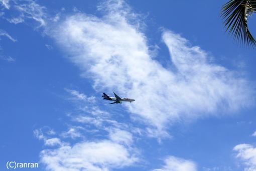 飛行機だぁ~
