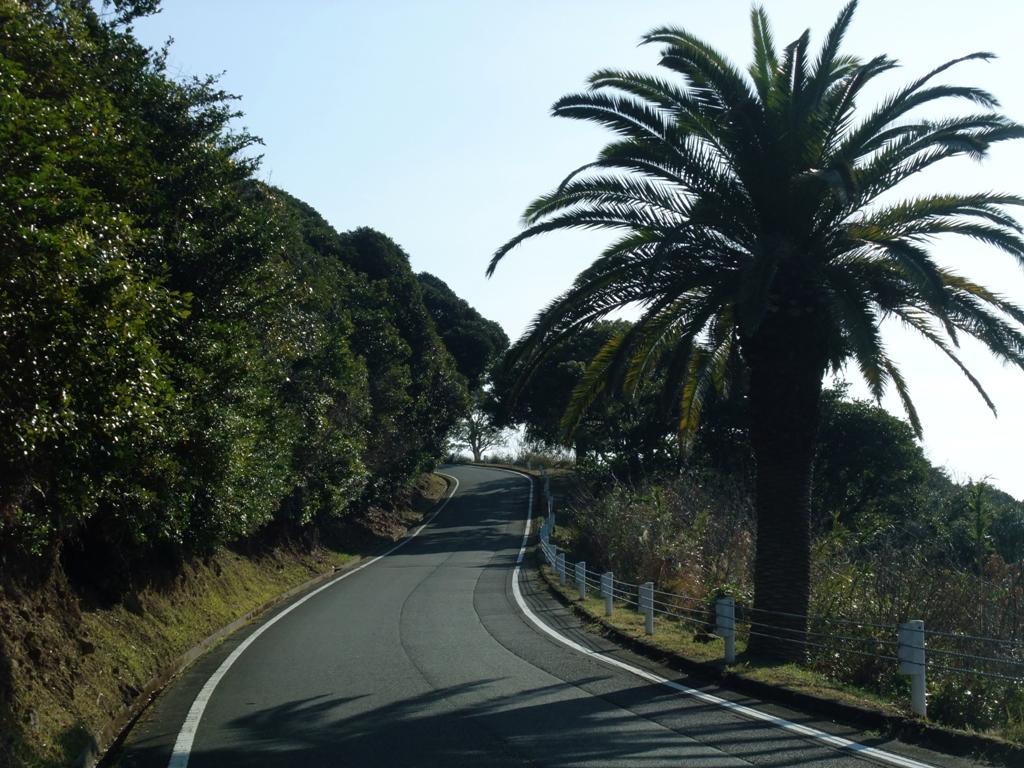 日向岬へと向かう道