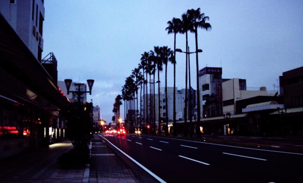早朝の宮崎市ヤシの木