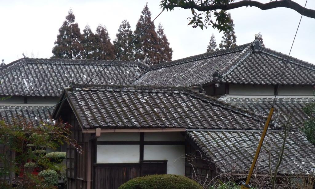 飫肥藩主伊東家の屋敷、豫章館の屋根