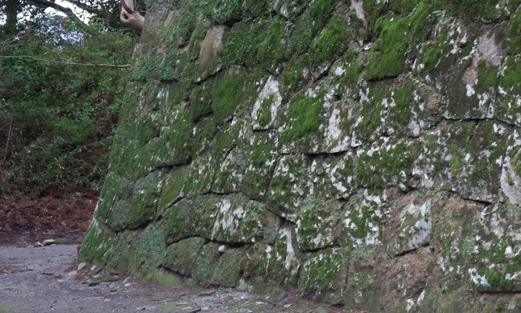 飫肥城の苔むした石垣