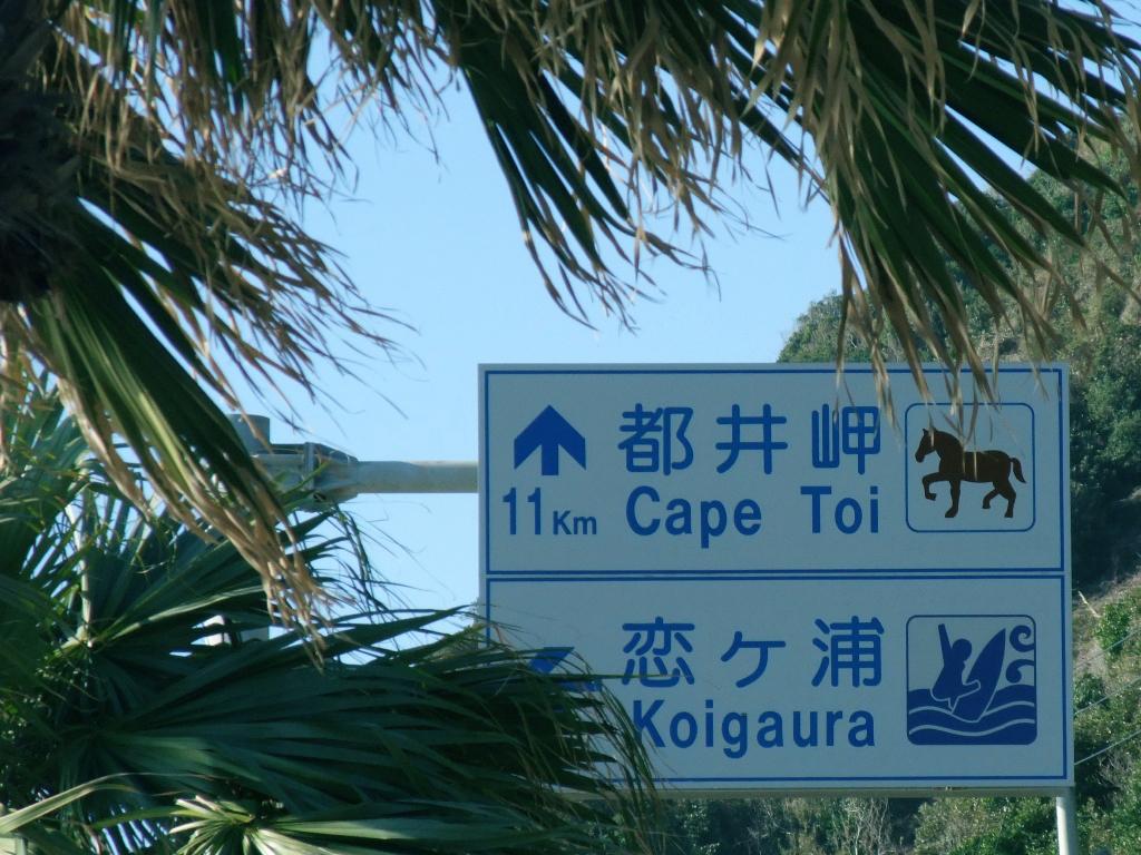 野生馬の生息するという都井岬を目指す