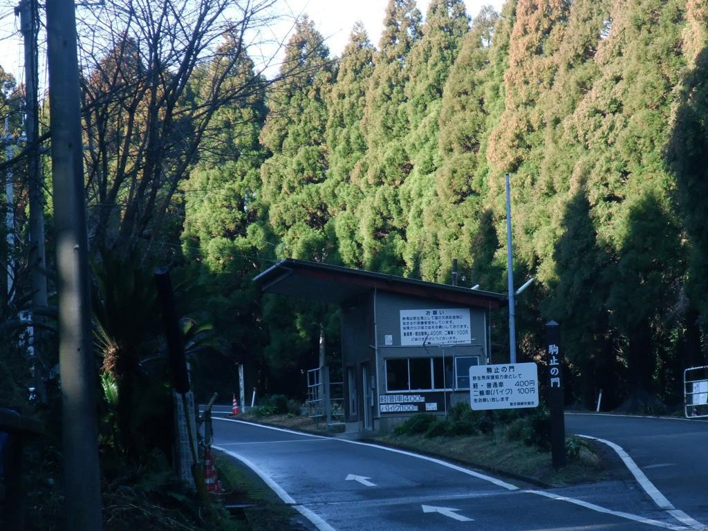 都井岬の駒留