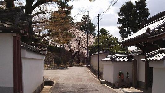 komyoji5.jpg
