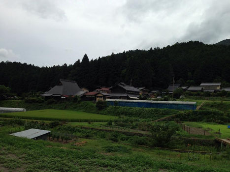 ohara4_20140803215632423.jpg