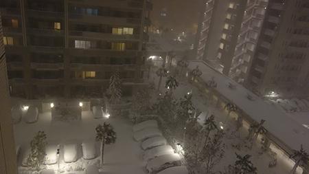 2度めの2014雪2