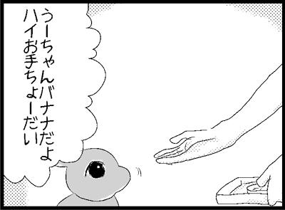 b61.jpg