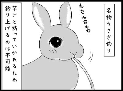 v54.jpg