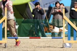 okayamao 142611_R