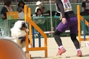 kagawa2 118311_R
