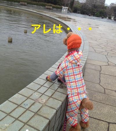 fc2blog_20140313204049c4e.jpg