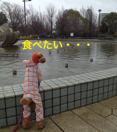 fc2blog_20140313204404c4e.jpg