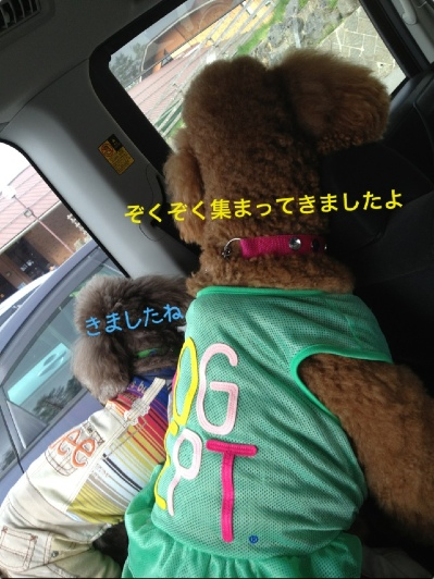 fc2blog_201405052332198ea.jpg