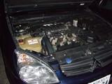 C5 V6 EXC