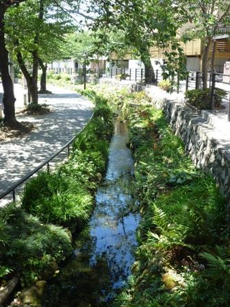 コーポラティブハウス下北沢緑道の写真