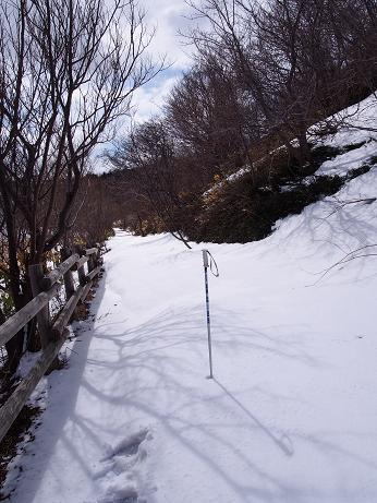 20140412久種湖9