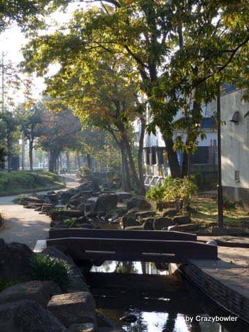 見沼代親水公園(見沼代用水東縁用水跡)2013秋