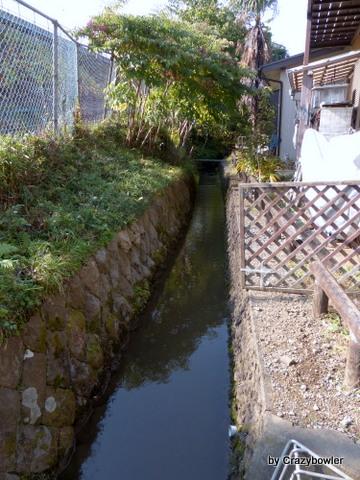 国分寺駅北口の野川の源流